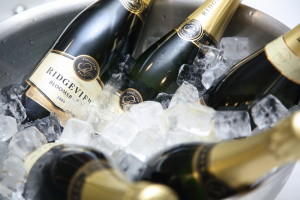 Bloomsbury with ice in champagne bucket