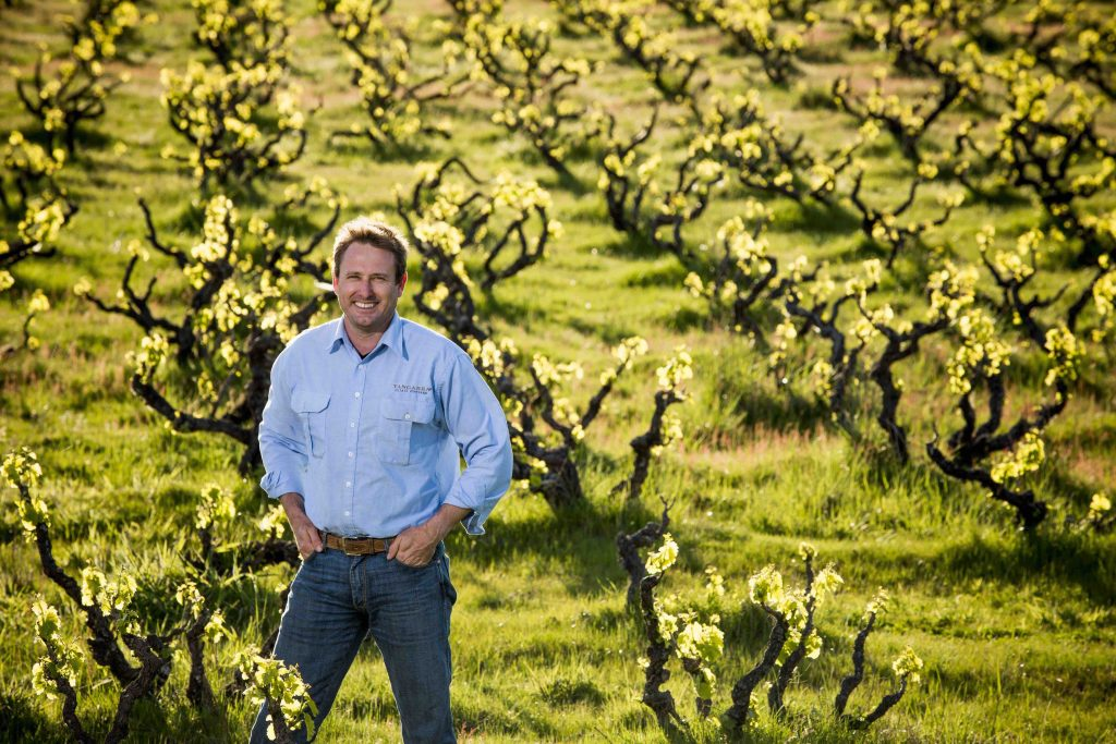 Peter Fraser in Vineyard actual