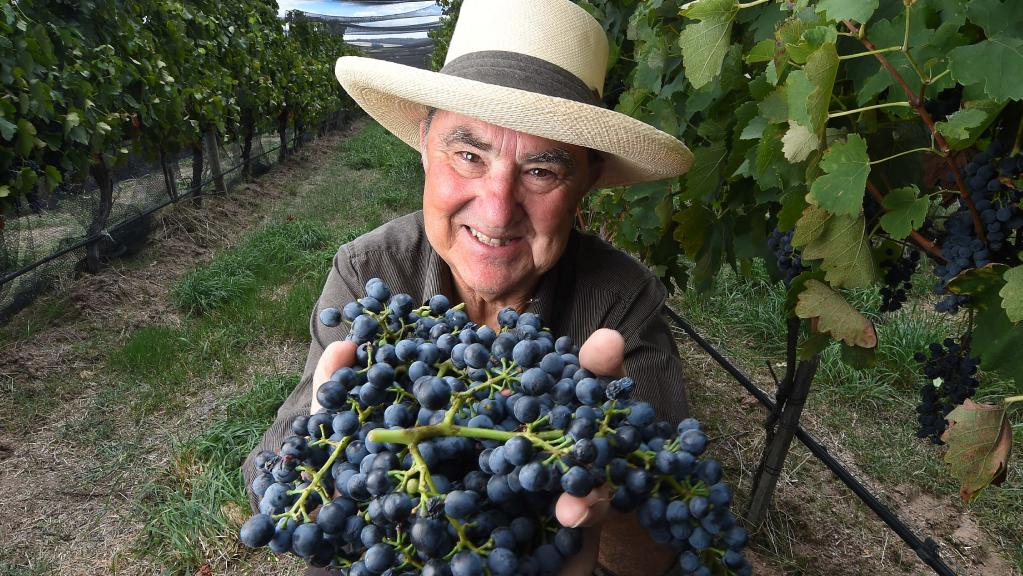 Julien Castagna is one of a number of natural winemakers making their mark