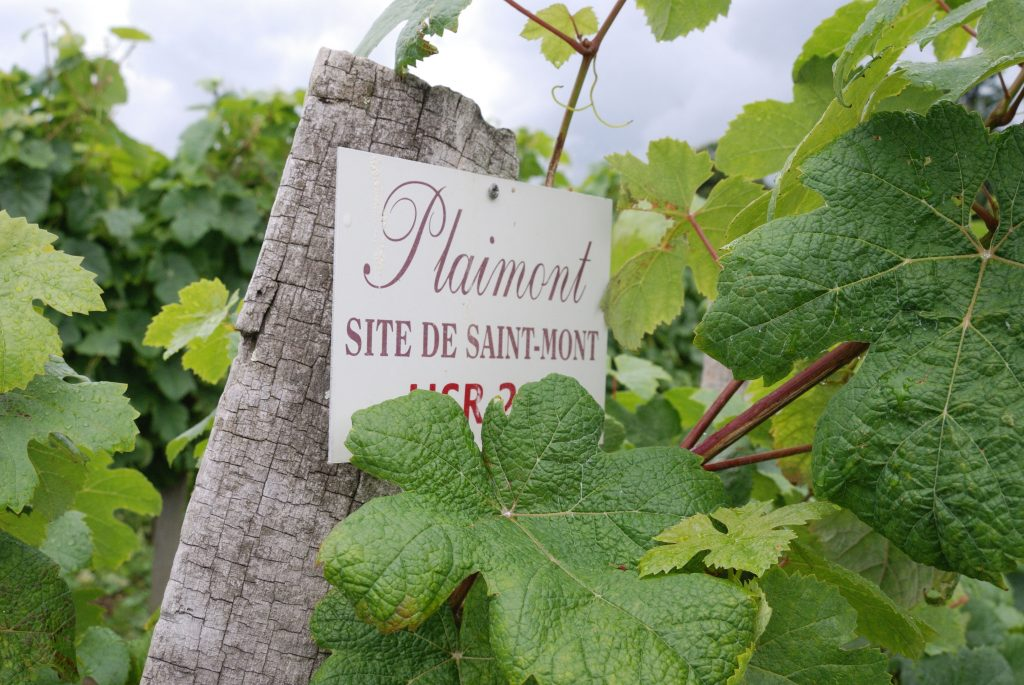 Plaimont's own Sant Mont vineyards are setting world standards for viticulture research