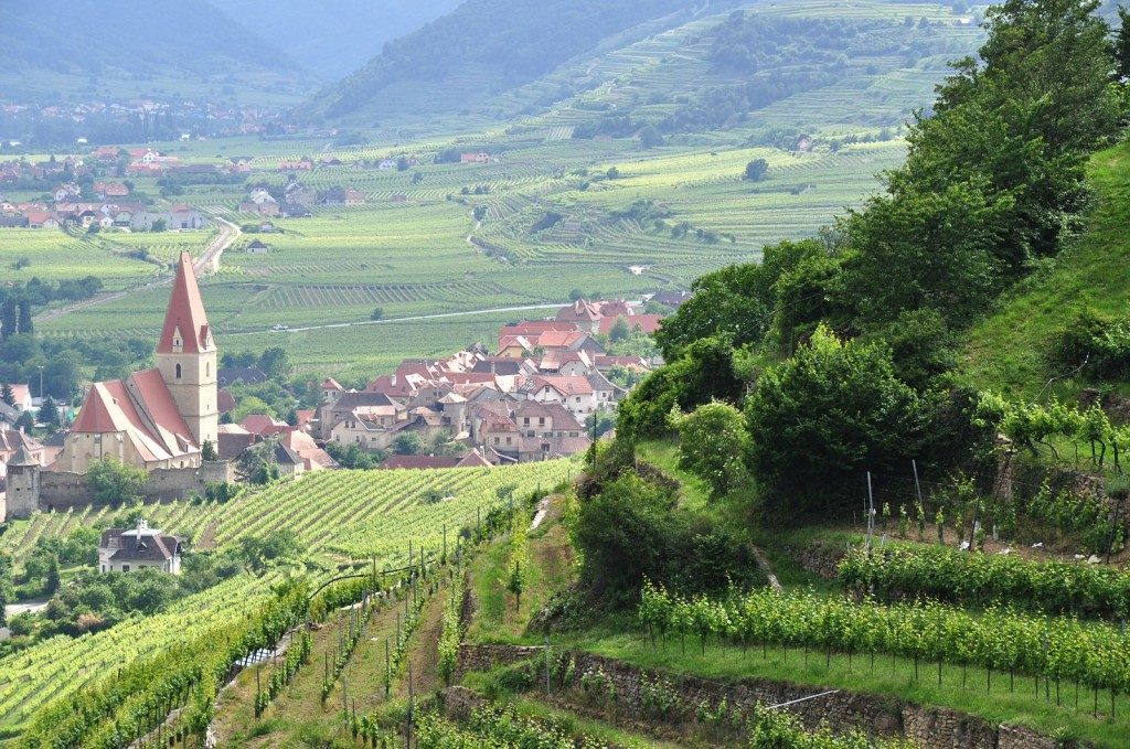 The Vinexpo event will help showcase Austrian wine to the world's top buyers