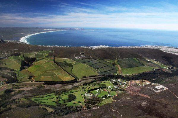 4-aerial-view-of-southern-right-hamilton-russell-vineyards-and-ashbourne