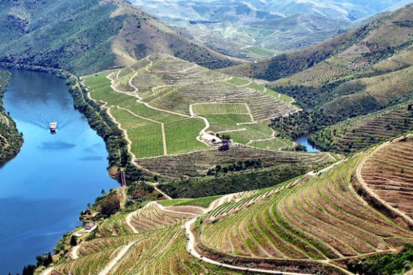 It's not all about port and red wine in the Douro Valley...