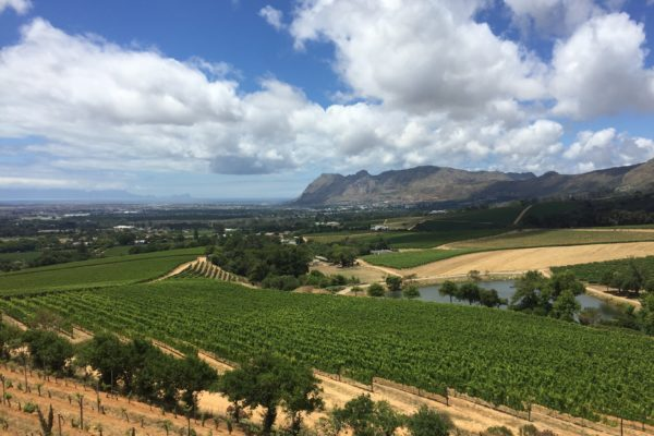 south-africa-klein-constantia