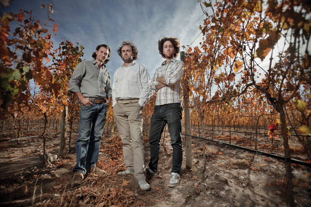 Argentina's Michelini brothers are part of the new wave exciting Argentine wine scene.