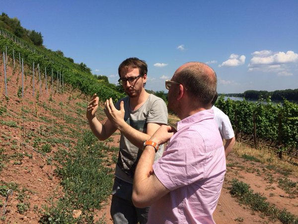 ABS Wine Agencies takes buyers out to Germany as part of its Masters of Riesling trips