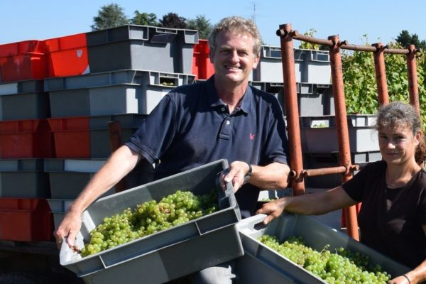 Gavin Quinney expects he could lose up to 50% of its 2017 harvest to the recent frost damage