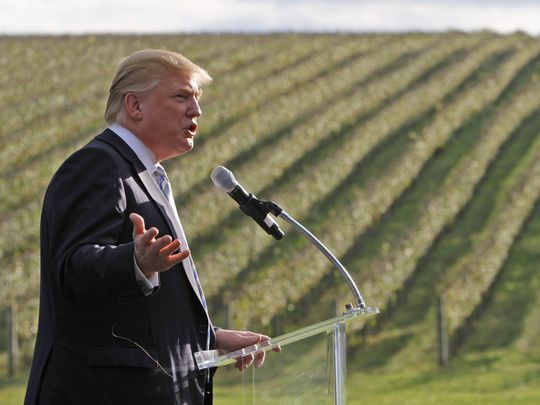 Donald Trump is said to be very proud of what he believes are amongst some of the most beautiful vines in the world