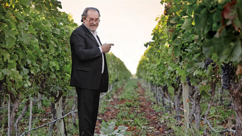 Every vineyard and every winery that Michel Rolland works in is treated differently, says Julian Viaud