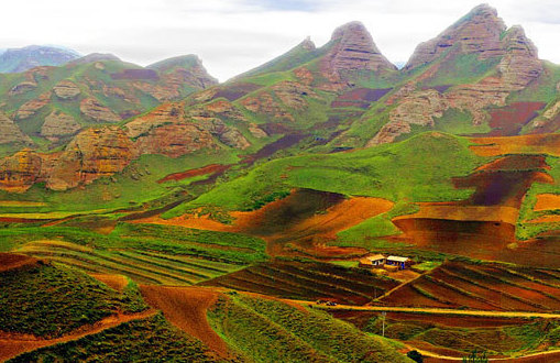 China's emerging wine region of Ningxia will be a big theme at this year's Vinexpo