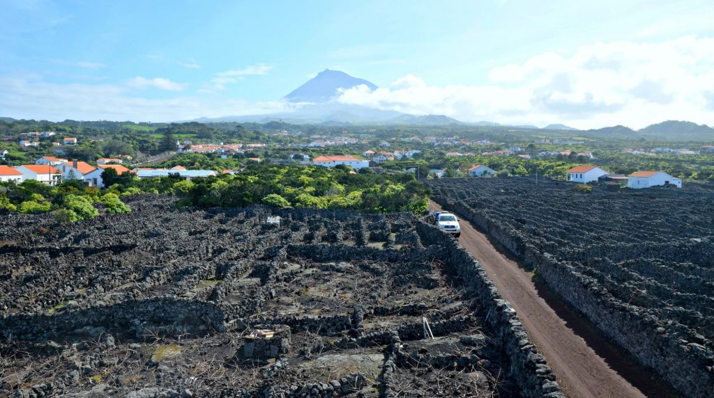 Volcanic soils make an impressive backdrop to Pico Island in the Azores