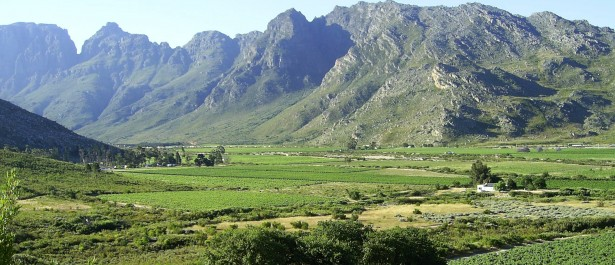 Get ahead with South Africa by checking out the Breedekloof region