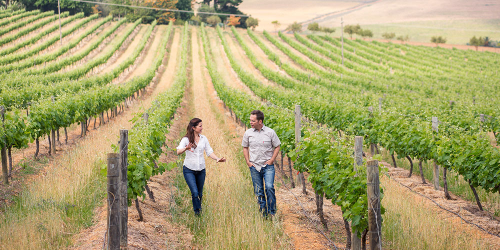 Chris and Andrea on their estate at Mullineux & Leeu Family Wines