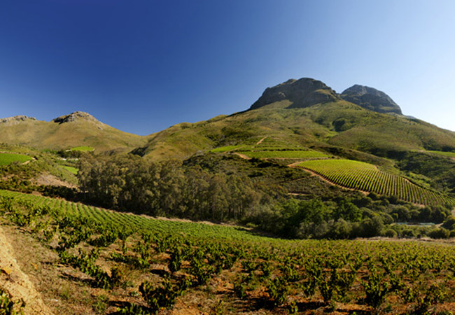 Keermont shares the same valley with Kleinood and De Trafford wineries