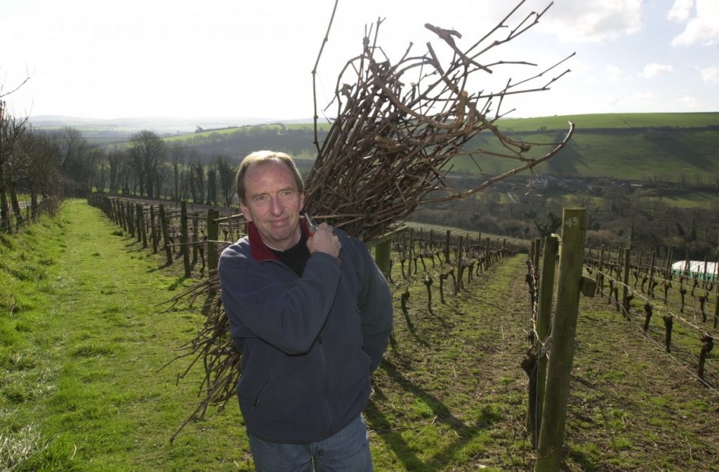Bob Lindo at Camel Valley is happy just taking every day as it comes rather than have a cunning five year plan