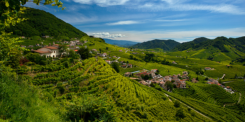 The more Italians allow the designated Prosecco making area to grow the more damage they do to its identity, argues Nik Darlington
