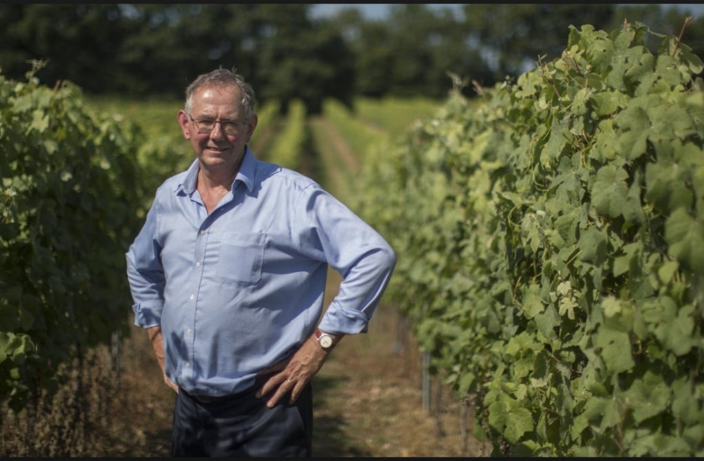 Chris Foss amid Plumpton's vineyards