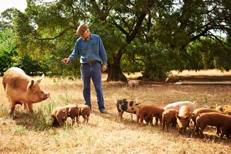 David Hohnen on his farm with his