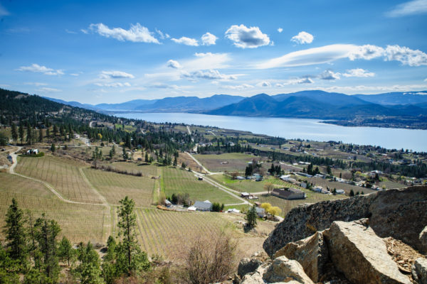 Stunning Okanagan Valley has ideal vine growing climate thanks to its 60 mile lake