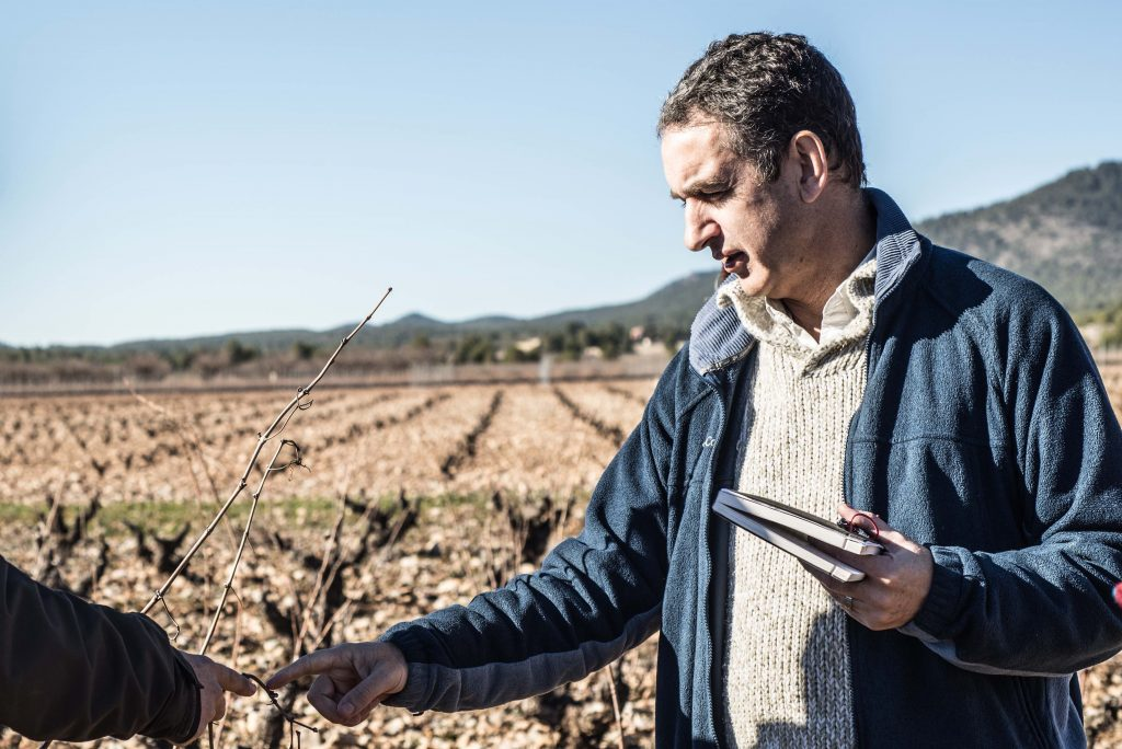 Robert Hunter has been making wine and working in Spain since
