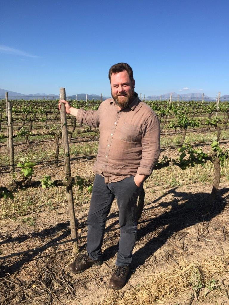Andre Morgenthal along with viticulturist Rosa Kruger is helping to preserve and bring back to commercial life old vines of 35 years and older