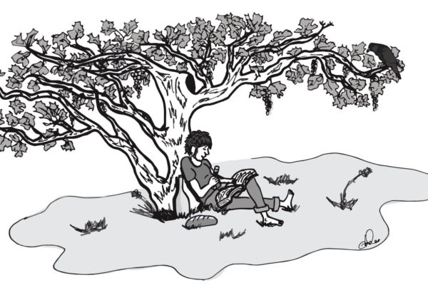 One of the illustrations from Wregg's book
