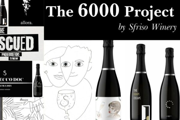 6000 project montage