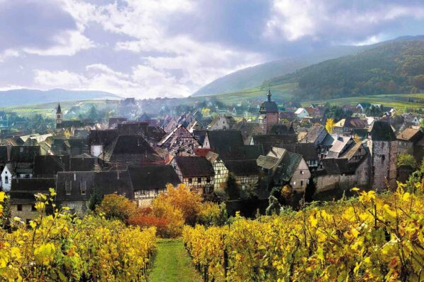 The stunning scenery of Alsace is matched by the world leading quality of its wines