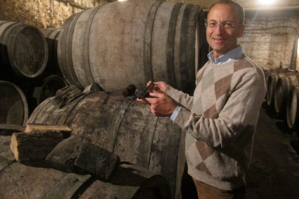 Rhône wines