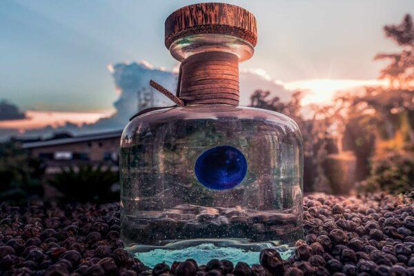 procera gin bottle